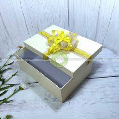 Hộp đựng quà tặng loại lớn HQ14 – Kích thước 30x20x10